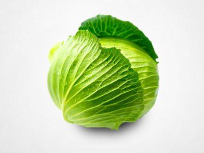 cabbage in aquaponics