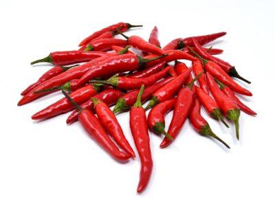 chili pepper in aquaponics