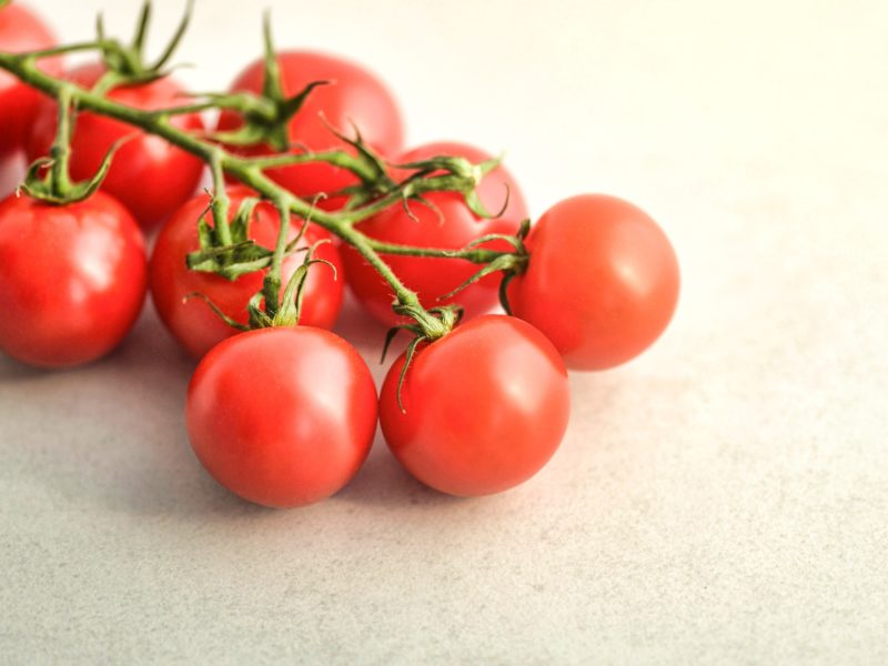 Grow Hydroponic Tomatoes: The Complete Guide