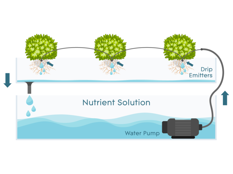 Drip Systems – How They Work