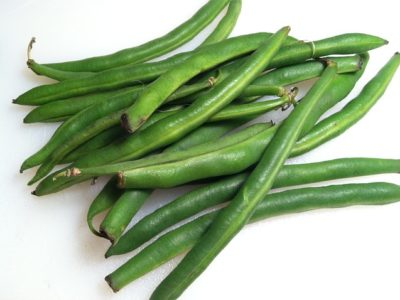 How to Grow Beans Using Hydroponics