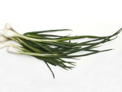 How to Grow Spring Onions Using Hydroponics