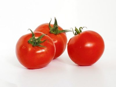 How to Grow Tomatoes using Hydroponics