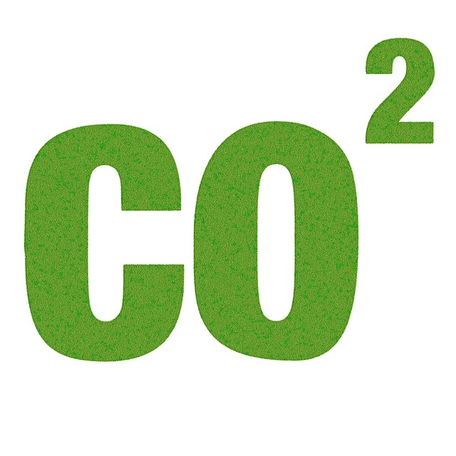 How Much CO₂ Do Plants Need?