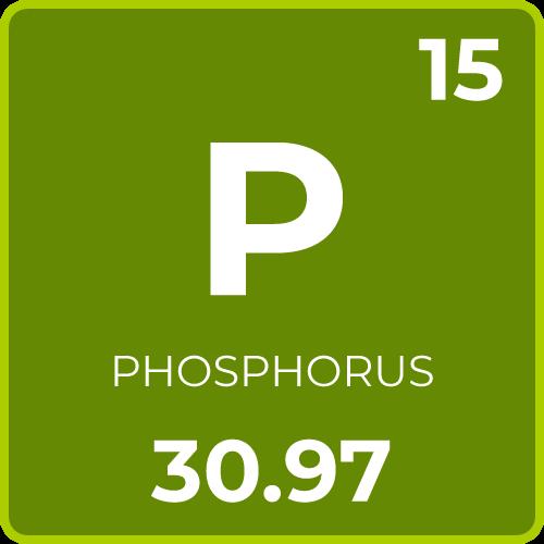Phosphorus for Plants