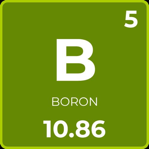 Boron for Plants
